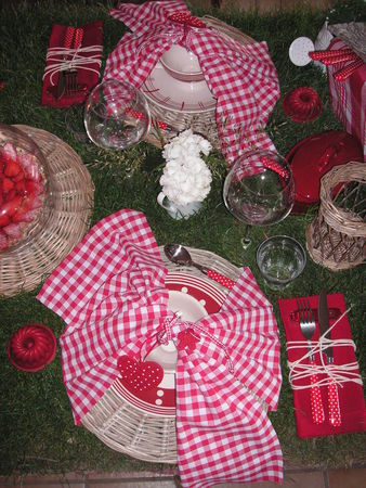 table_picnic_012