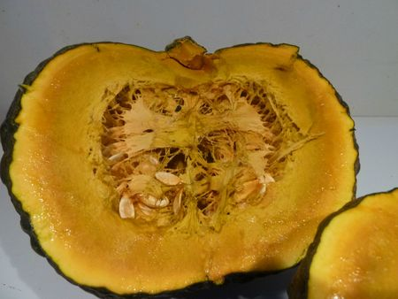 14-courge mystre (4)