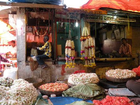 Mysore___Calicut___arriv_e_Cochin_321
