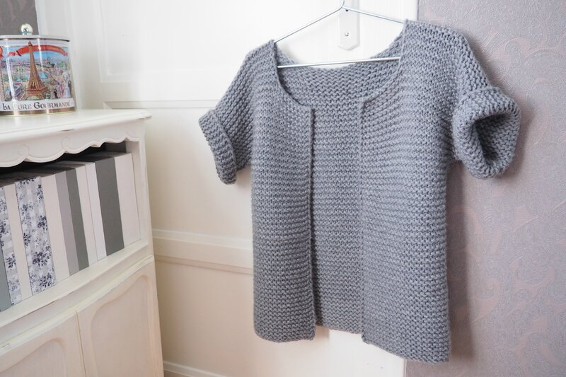 modele tricot veste simple
