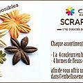 Nouveauts Scrap  la Carte