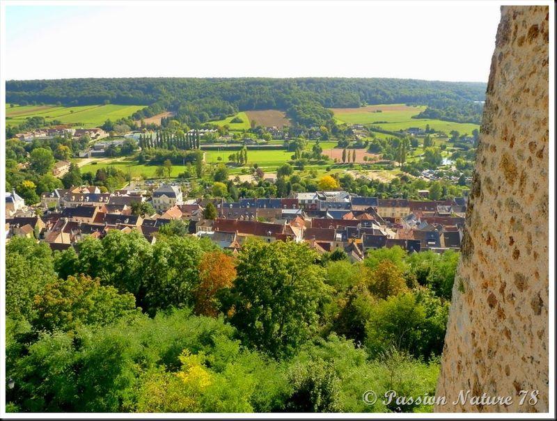 Le château de la Madeleine (3)