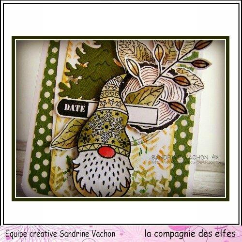 Sandrine VACHON dt LCDE nov (2)
