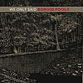 We only said – boring pools (2015)