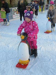 2012-12-16 patin à glace (2)