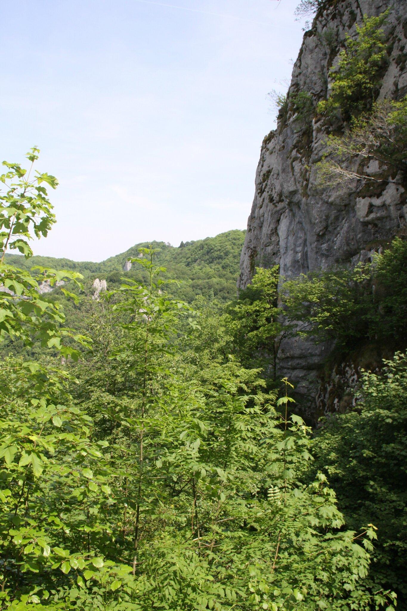 balade dans le jura  les grottes des moidons