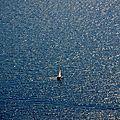 Cassis, Cap Canaille, voilier sur mer (13)