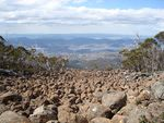 mount_wellington4