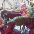 Nouvel an chinois 2009