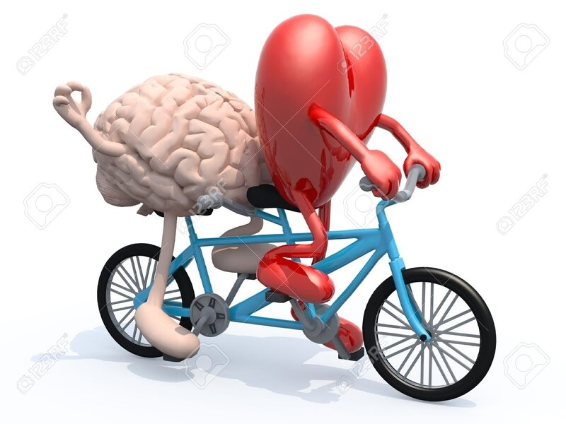 39896858-le-cerveau-et-le-c-ur-humain-avec-les-bras-et-les-jambes-d-équitation-vélo-tandem-illustration-3d