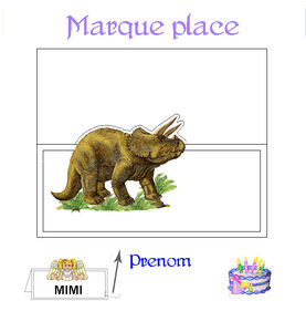 marque_place_3
