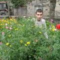2008 08 19 Cyril devant ses fleurs d'été en mélange