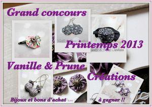 concours printemps 2013