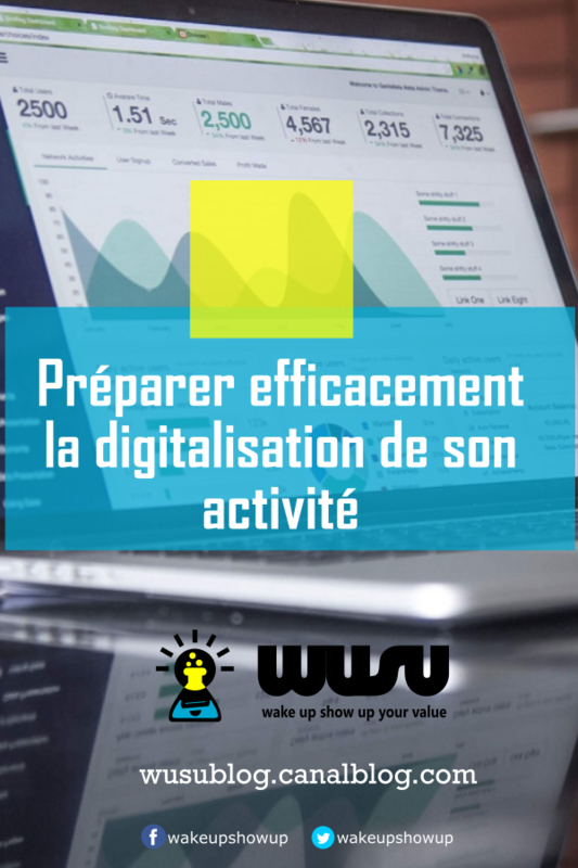 digitalisation-entreprise-cameroun-coaching-marketing-digital-2017-wusu