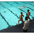 natation synchro 436 copie