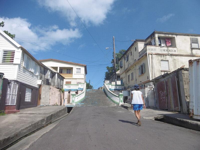 Ile St-Kitts (44)