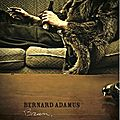 Bernard adamus