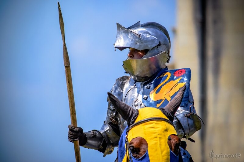 Femmes-chevaliers au Moyen Âge Chevalerie Initiatique - tournois dû à la plume de René d'Anjou (4)