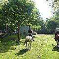 balade à cheval médiévale - Abbaye de Hambye (59)