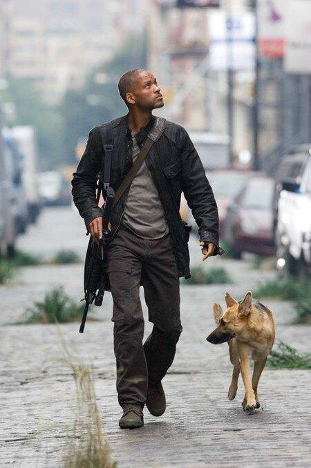 Robert Neville et son chien Sam