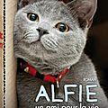 Alfie un ami pour la vie > rachel wells