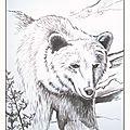 Coloriage artistique - dessin ours brun Ghislaine Letourneur