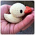 Caneton crochet