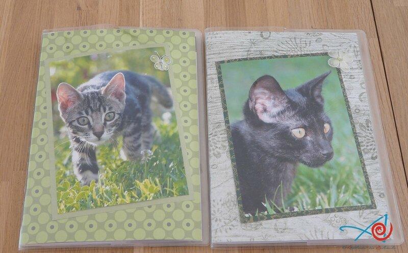 Deux carnets (Copier)
