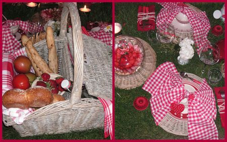 2009_05_23_table_picnic1