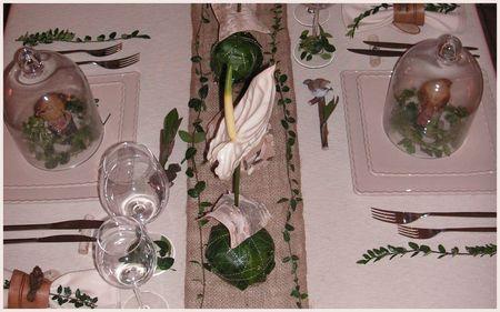 2009_09_23_table_bouleau_blanc_vert30