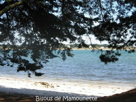 S_jour_Morbihan