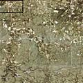Lugos en 1763