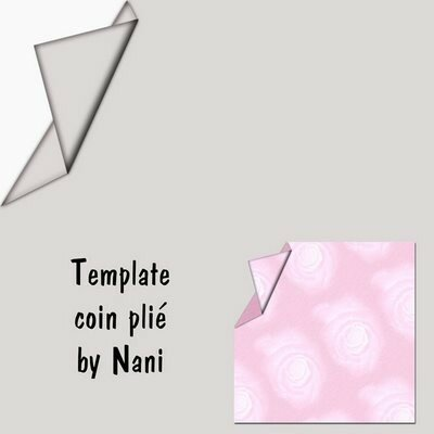 TEMPLATE_coin_pli_C3_A9Preview