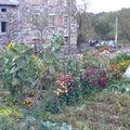 2008 10 01Mon jardin