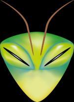 1352722735-projet-insecte