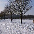 0992 - Promenade hivernale de Janvier