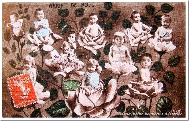 Aux petits bonheurs d'Arielle © Tous droits réservés