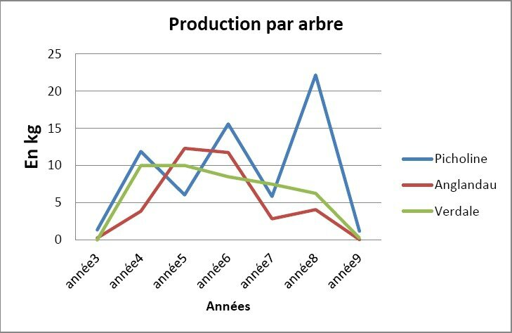 production des arbres 1