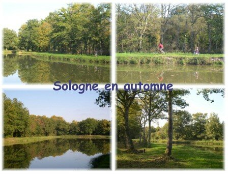 sologneautomne