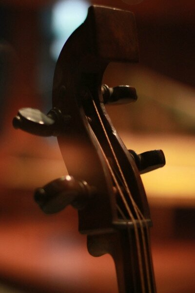 violons z