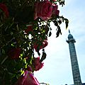 Piaget rose day - paris, place vendôme