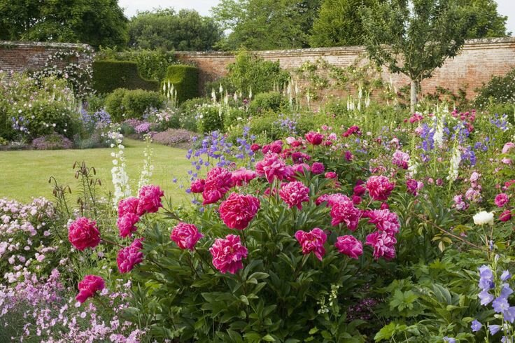 Quelques pivoines le cottage de gwladys - Mixed style gardens ...