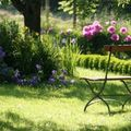 gazon-grand-jardin-pelouses-575788