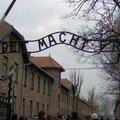 Auschwitz I :
