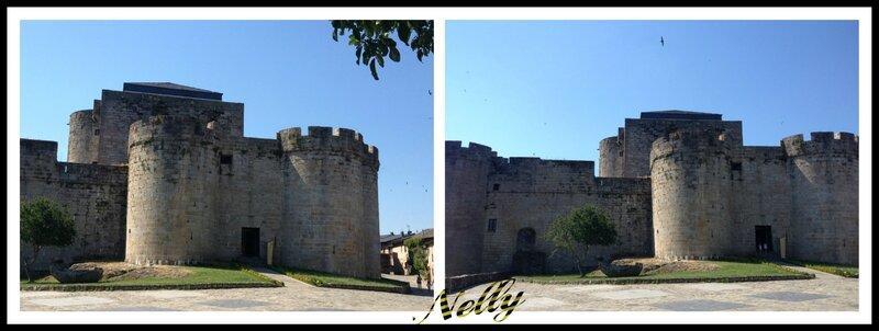 Le château de Sanabria