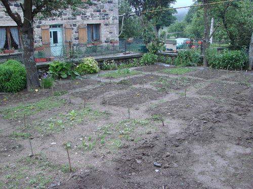 2008 06 17 Une partie de mon jardin