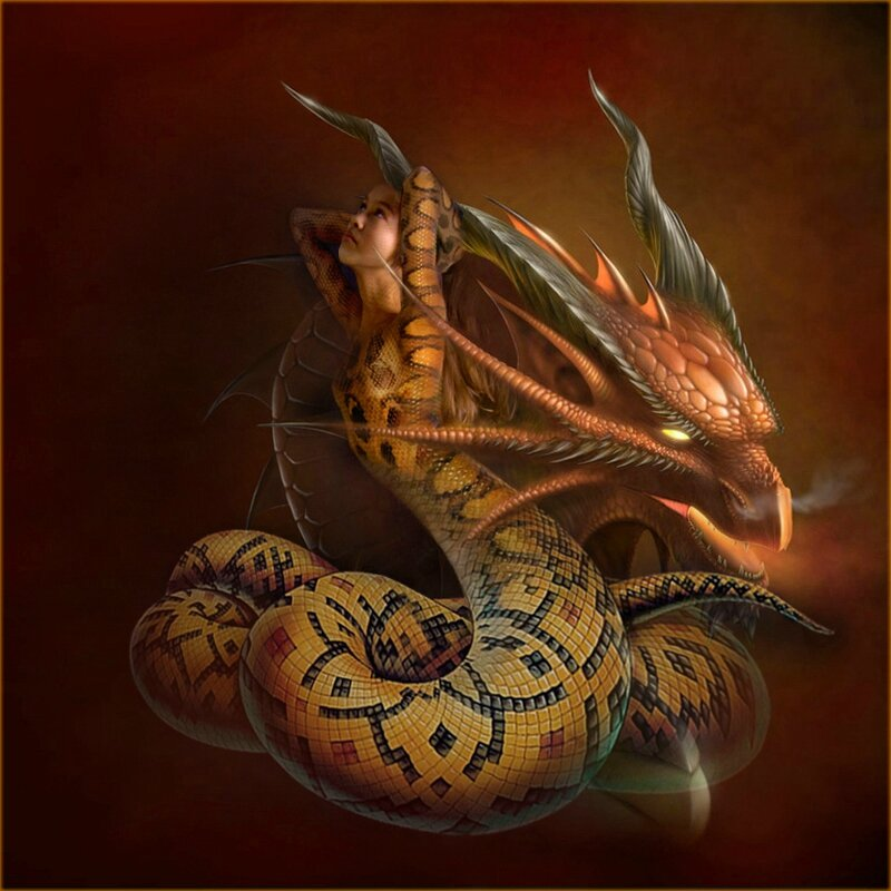 Le serpent et le dragon copie1