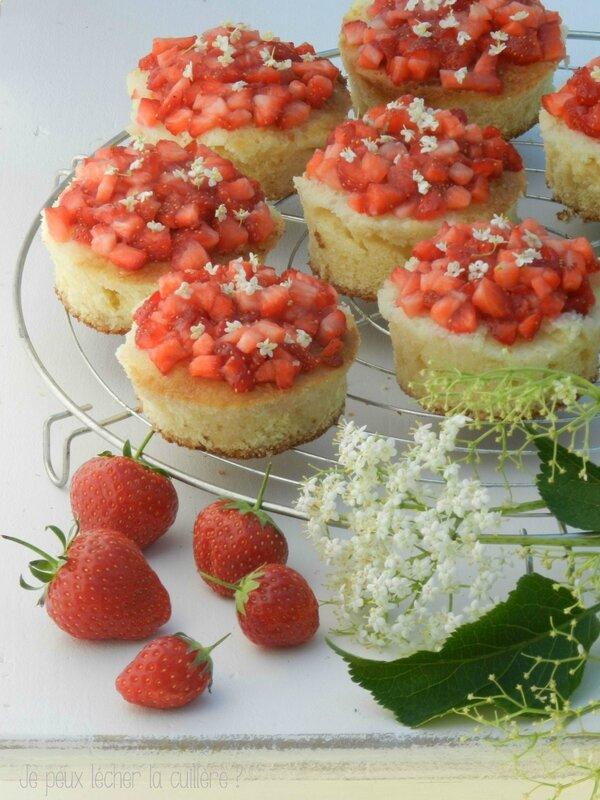 Génoise aux fraises et fleurs de sureau2