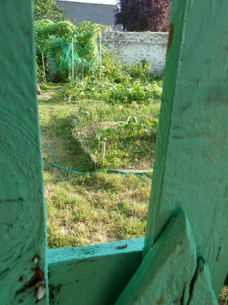 jardins familiaux (50)