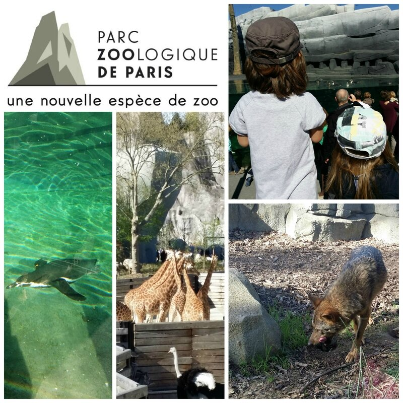 zoo-de-vincennes
